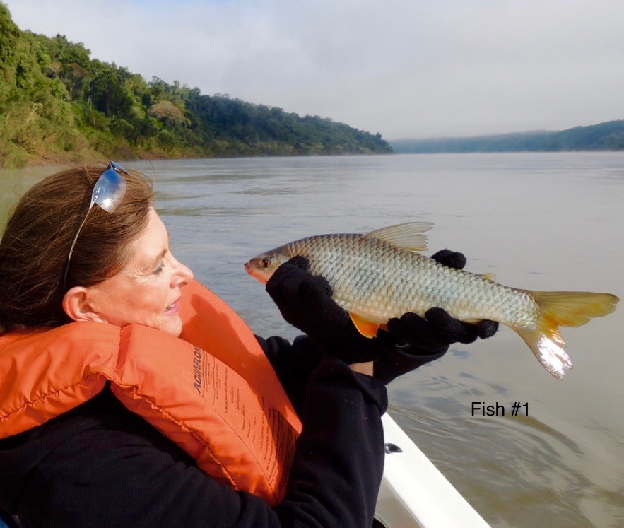First catch at Rio Parana