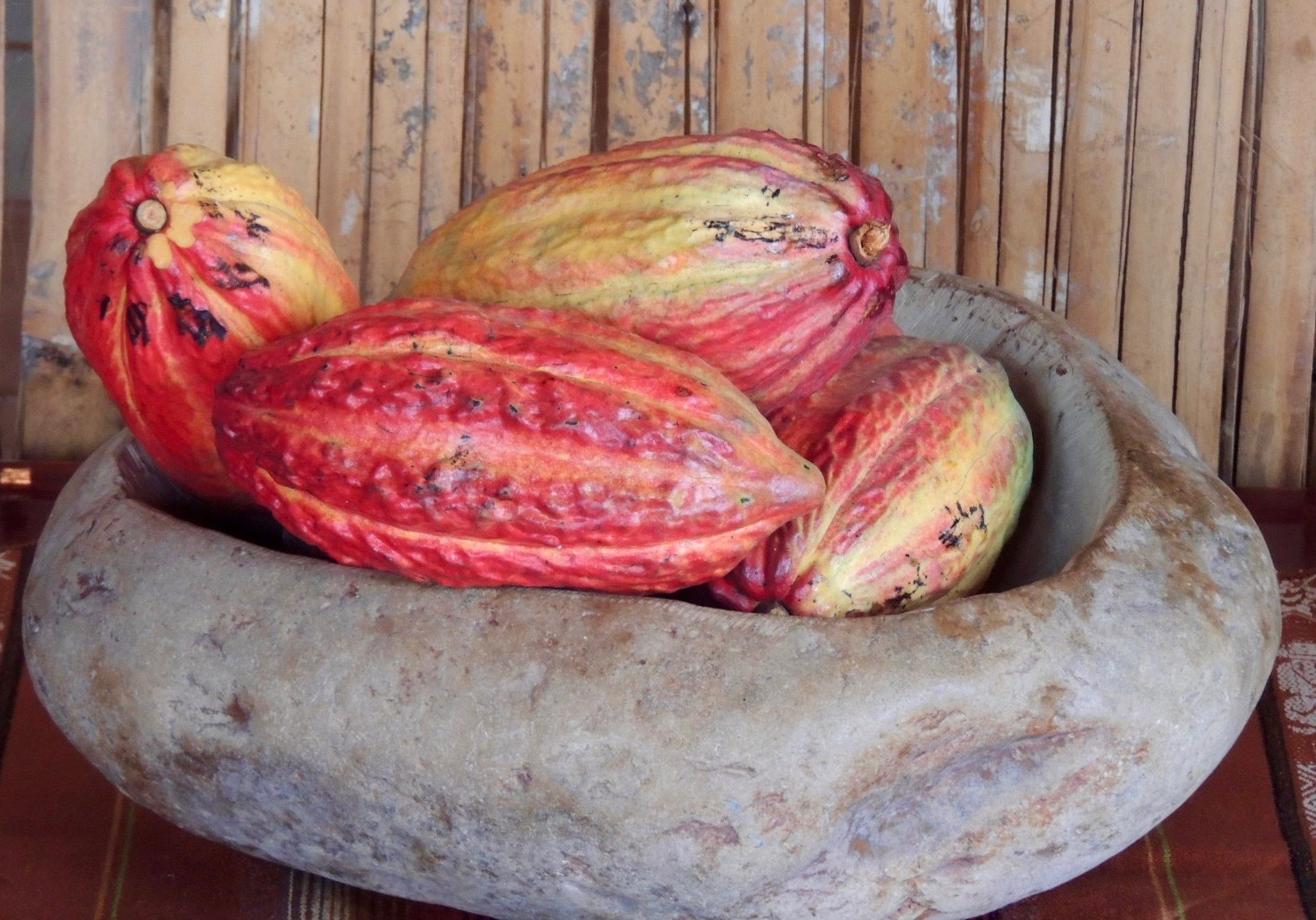 Cocoa Beans in bowl at Chocolates Pacha