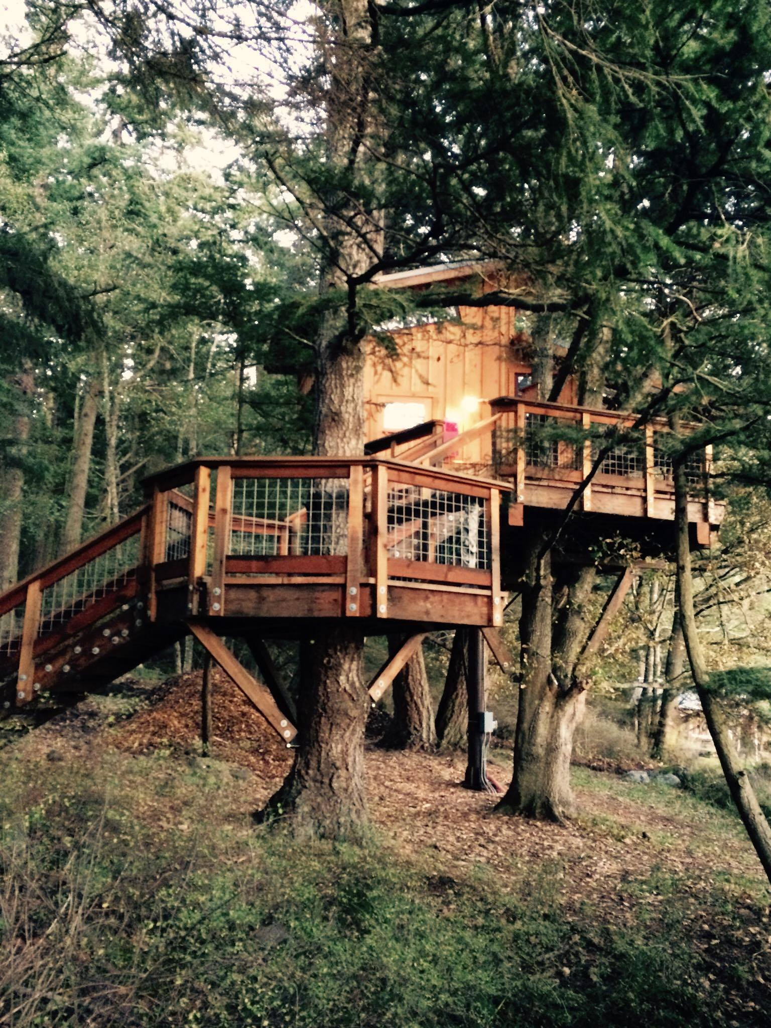 Commune with nature. Like being a kid again and having your very own tree house.