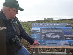 Docent: Piedras Lighthouse in San Simeon