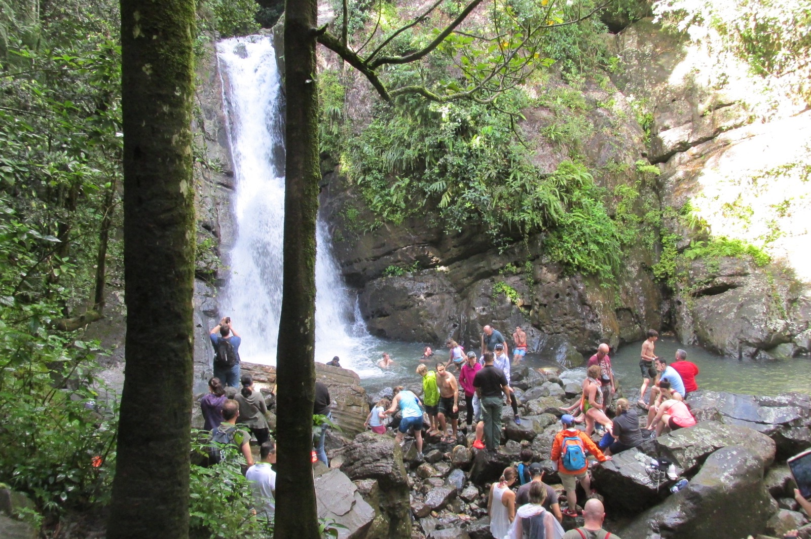 El Yunque Rain Forest Waterfall