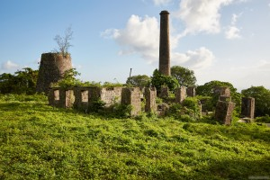 Ruins of Hamilton Family Plantation