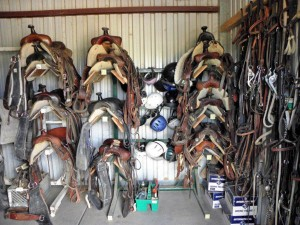 Collection of saddles
