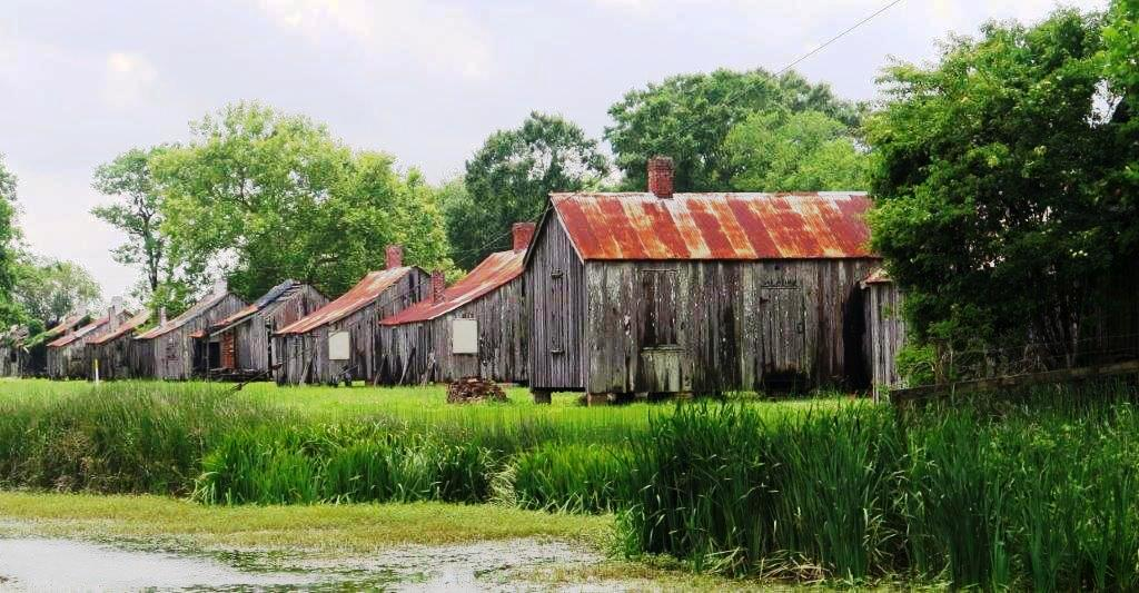 Louisiana's Cajun Bayou: Where Gators, Gumbo and Gallic History Prevail