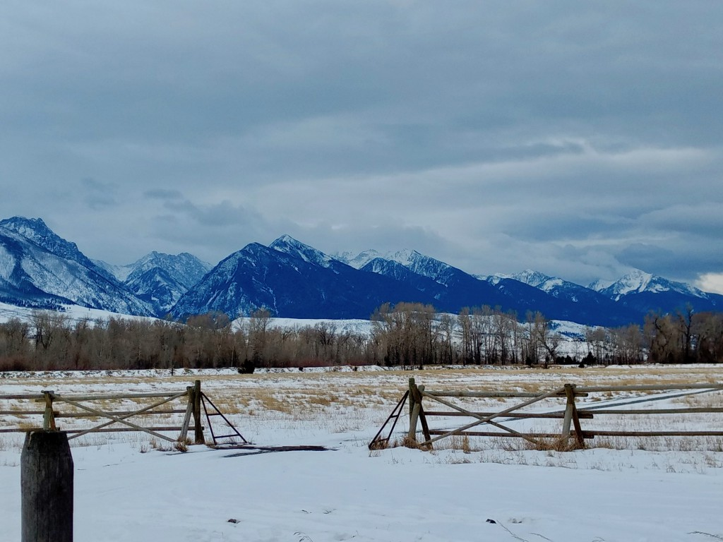 A Christmas postcard of the Montana countryside.