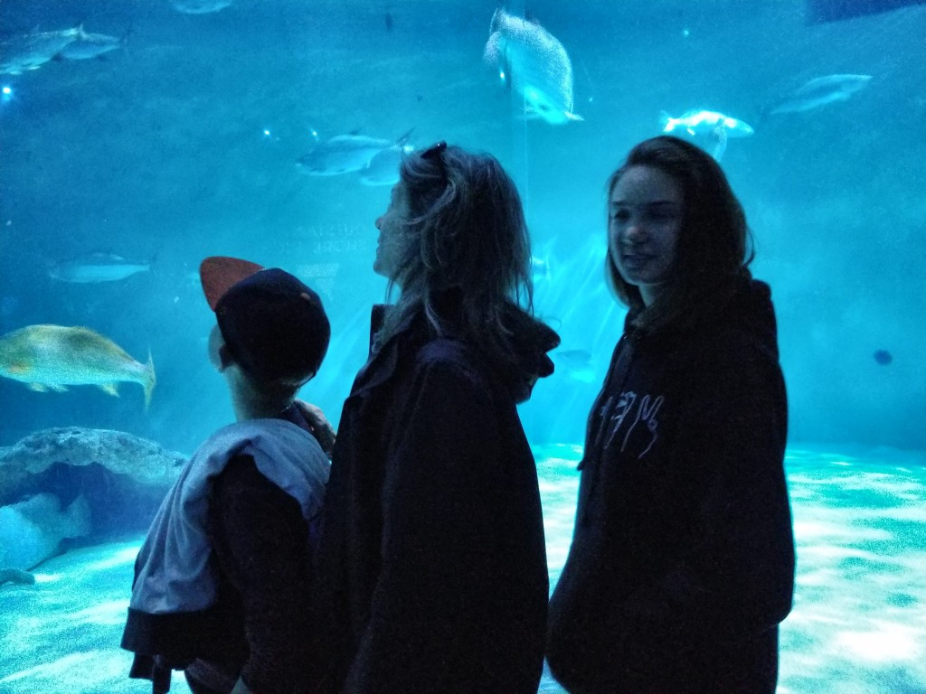 In front of the giant fish tank at the Audubon Aquarium of the Americas