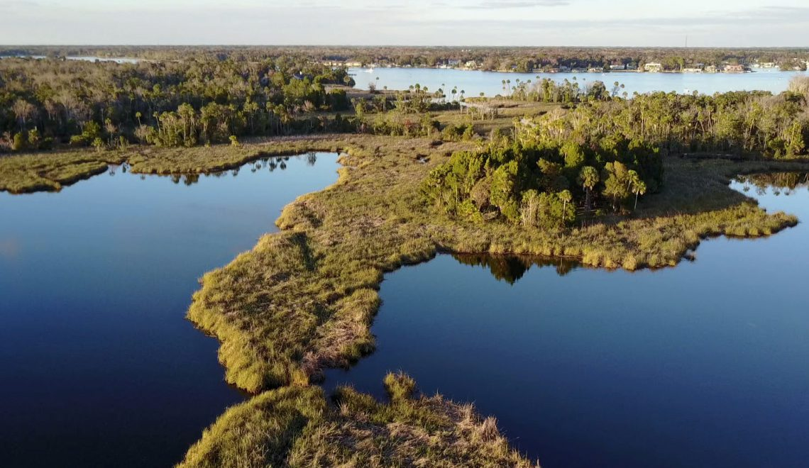 Crystal River, Florida: Best Small Town in America