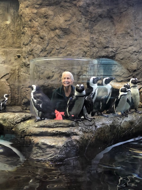 Bonnie with the penguins-up close and personal